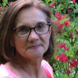 Kim Ziegelman, MSW